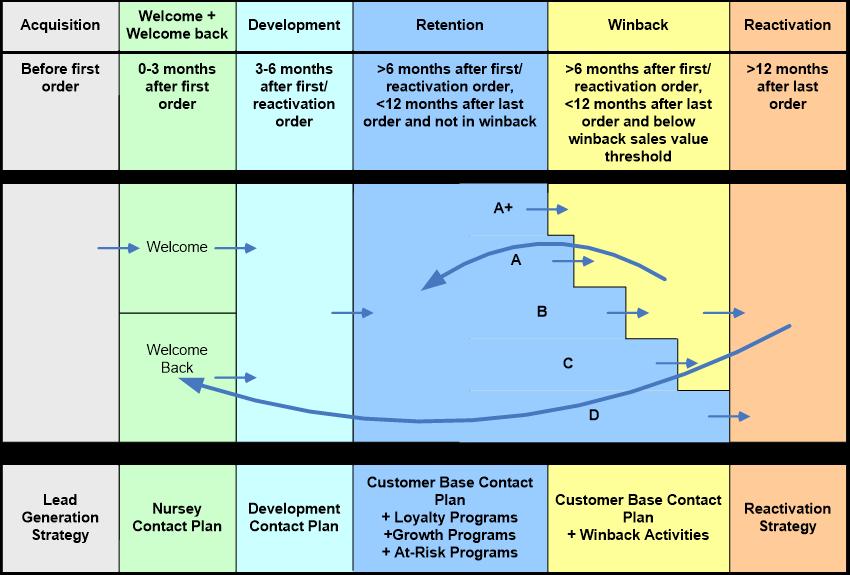 Sechs Phasen des Kundenlebenszyklus
